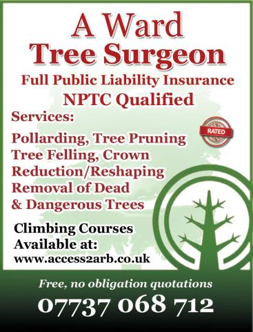 Rated Directories Award Tree Surgeon